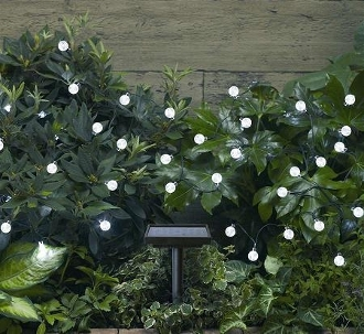 Solar Festive Light - Warm White Pearl LED